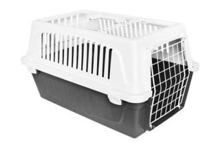 Transportbox für Haustiere