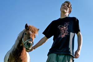 Pferd&Reiter_Frage_der_Relation300(c)PFOTENHILFE
