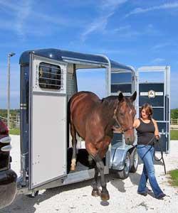 pferdeanhaenger250x300