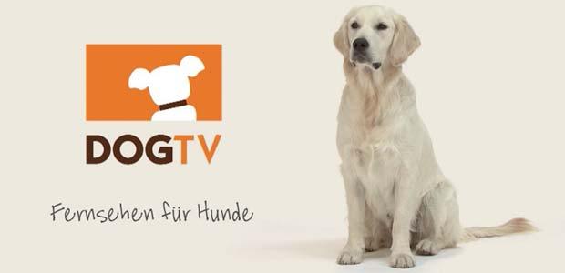 dogtv-fuerhund620x300