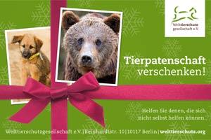 WTG_300x200-Pate-Weihnacht
