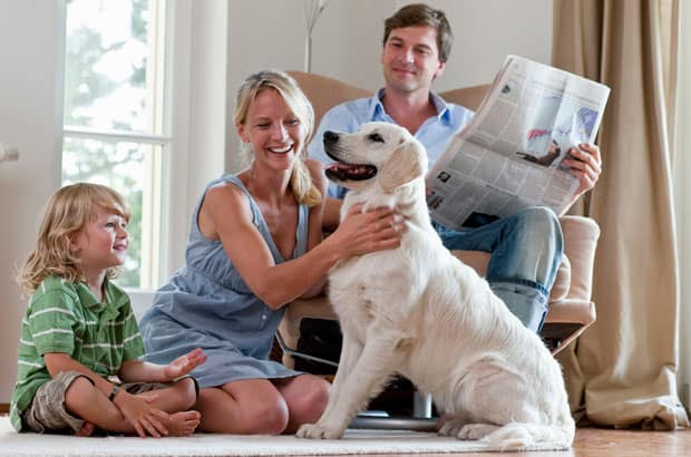 Familie-Hund620x410