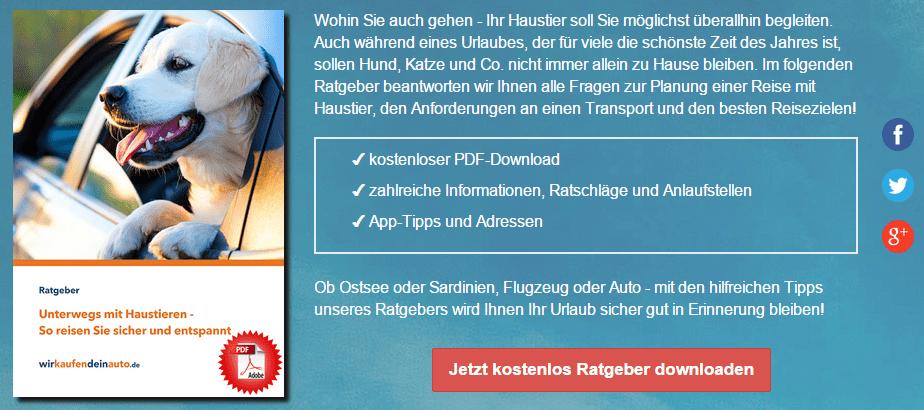 Screenshot_Ratgeber