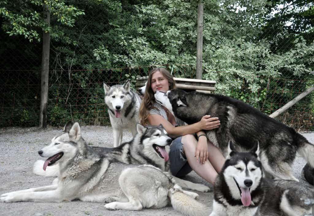Andrea Hentschel mir ihren Hunden
