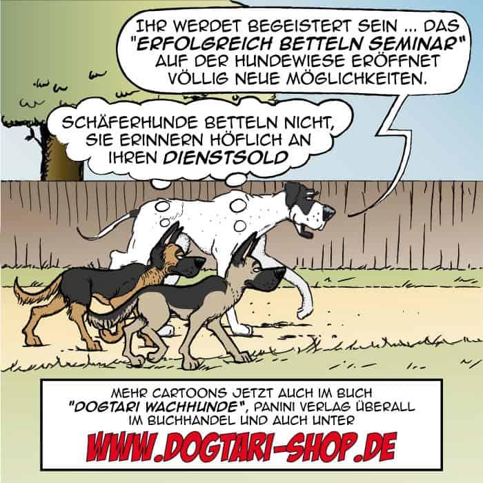 Dienstsold - Dogtari