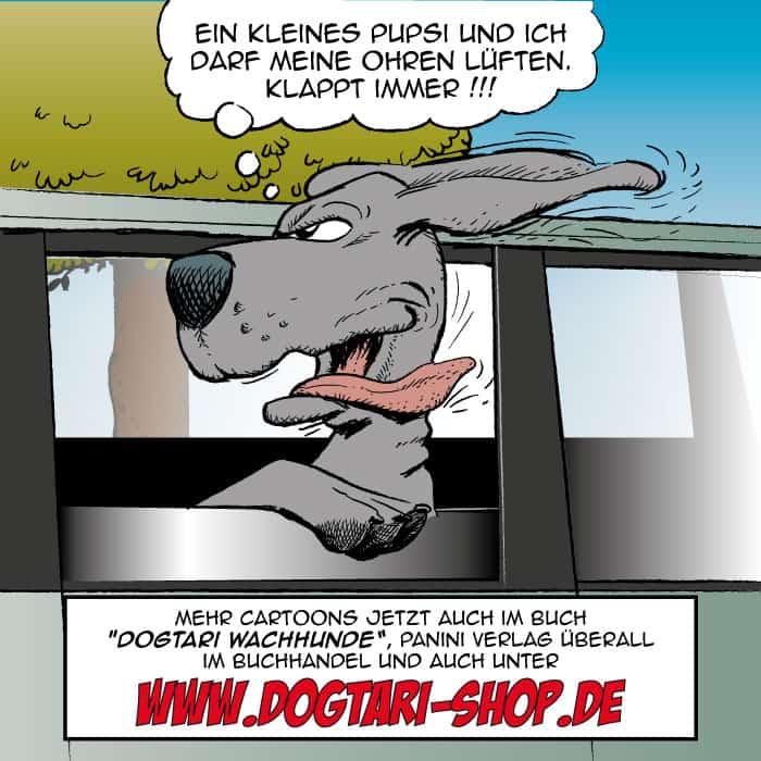 Doggen Pupsi